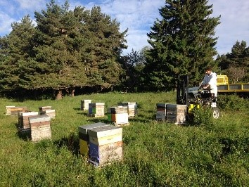 https://www.la-ruche-auvergnate.com/img/cms/2%20RUCHER.jpg